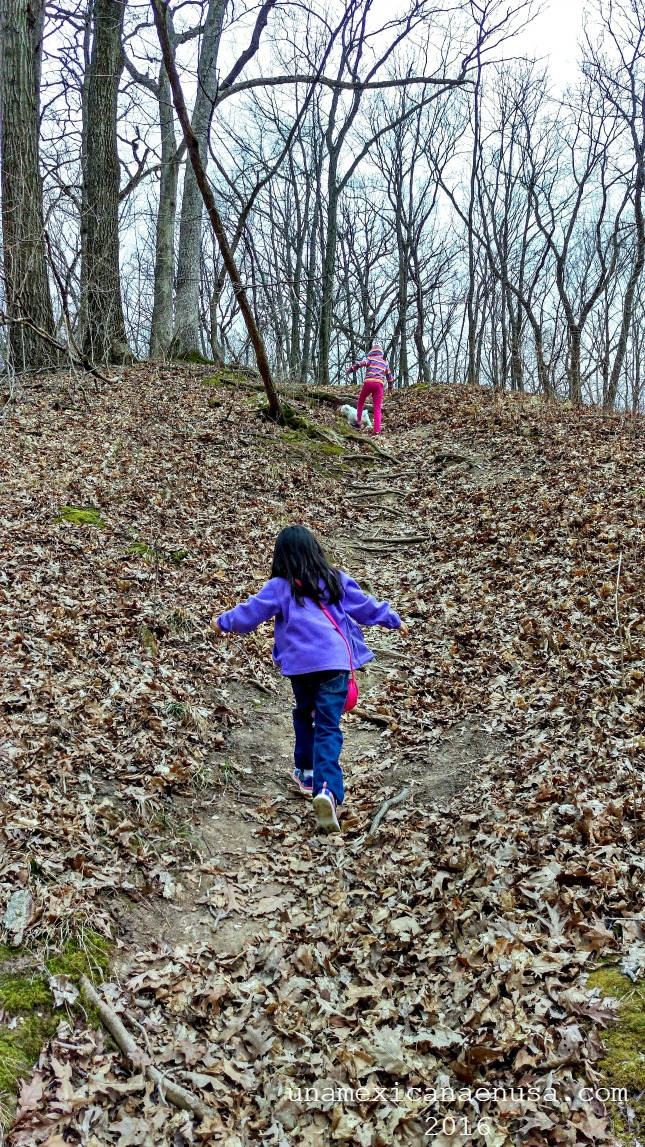 Camino o trail para caminar en el parque Detweiller park, Peoria IL.