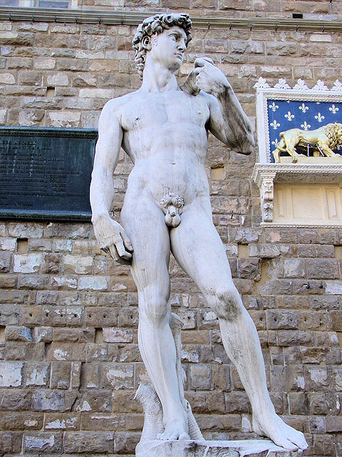 A replica of the 'David' now stands in front of the Palazzo Vecchio in Piazza della Signoria in Florence, Italy.