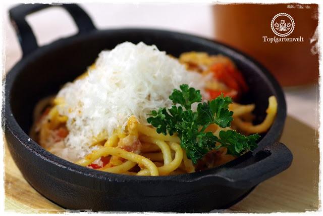 Gartenblog Topfgartenwelt Buchtipp Pasta e basta! Rezept: Spaghettoni all'amatriciana: Basisrezept Grundrezept für Nudelteilg