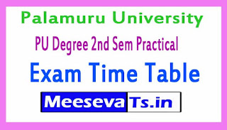 Palamuru University PU Degree 2nd Sem Practical Exam Time Table 2017
