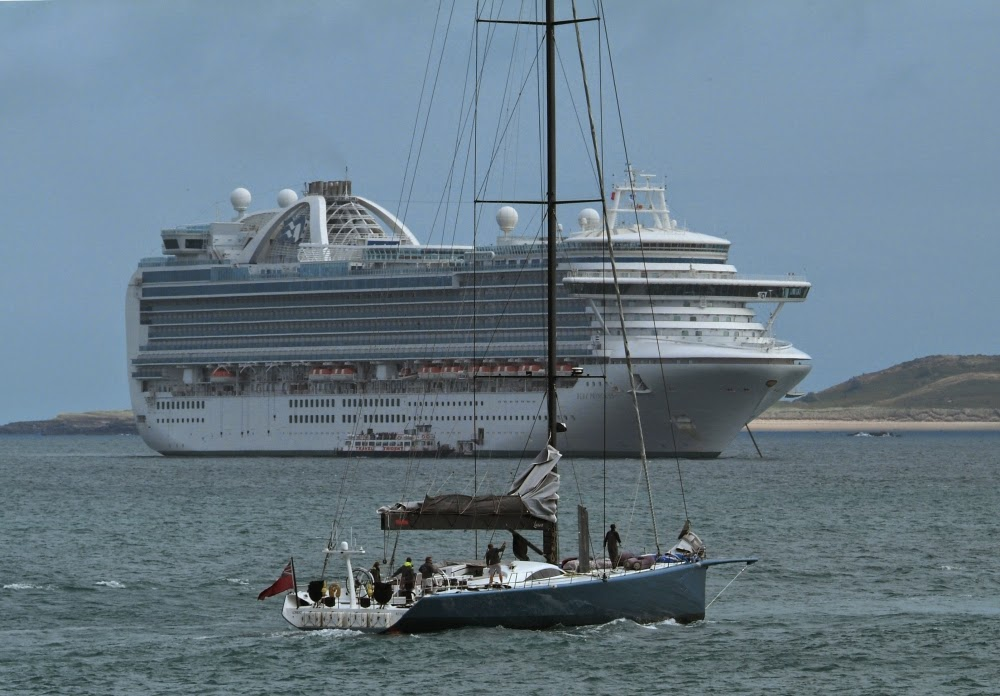 Last Tender: Ruby Princess, Leopard 3