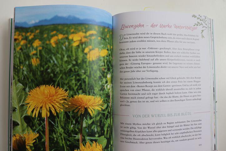 Buchvorstellung-Fräulein-Grüns-Kräuterwunder-Steiermarkgarten