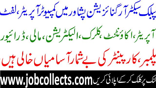 Public Sector Organization Peshawar Jobs In Pakistan