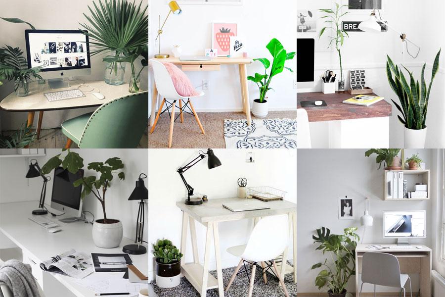 5 objetos imprescindibles para un escritorio m s feliz for Ideas decoracion escritorio