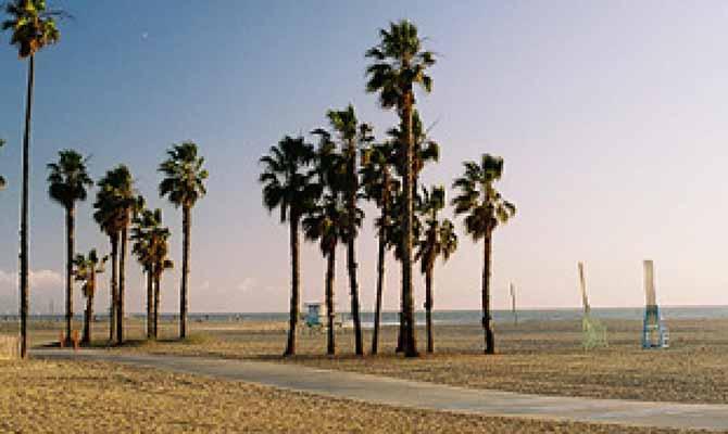 Venice Beach Travel Trip