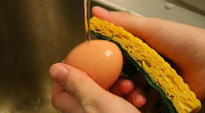 bahaya simpan telur dah dibasuh