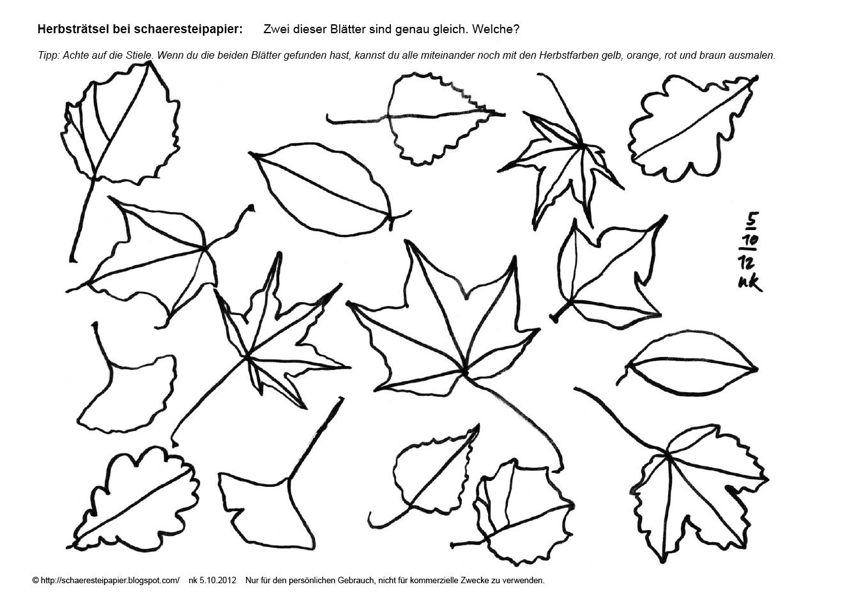 Herbst Ausmalbilder Bltter  Ausmalbilder Webpage