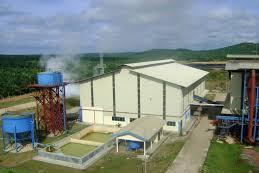 Loker Surveyor project Pabrik Kelapa Sawit (PKS)