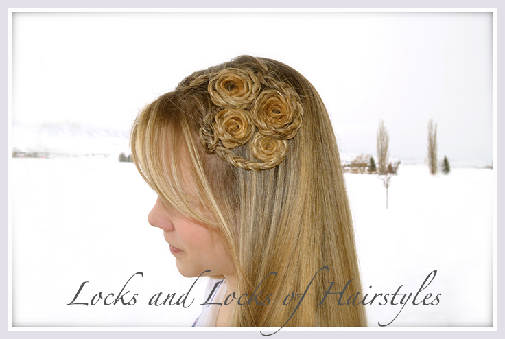 Locks and Locks of Hairstyles: Quick and Easy Video ...