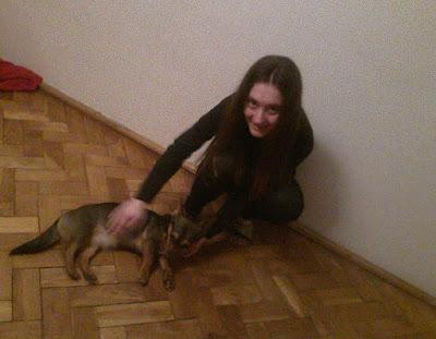 Wynajmowanie mieszkania a pies