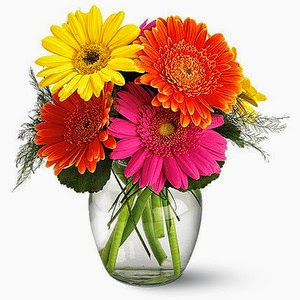 Which Colour Of Flowers Is Best For A Friendship Bouquet, A Friendship Bouquet, Flowers for Friends