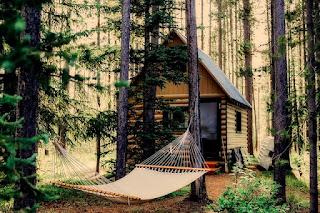 Cabane en bois construite dans la nature.