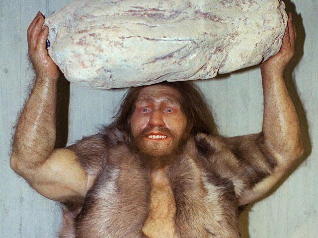 Riassunto Uomo di Neanderthal