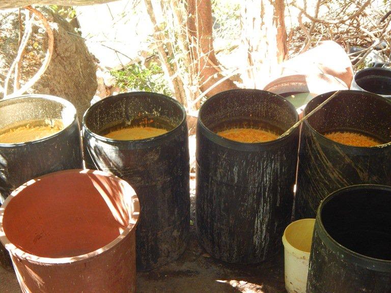 Localizan narcolaboratorio en La Cofradía, Sanalona