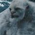 Enigma de  Pie Grande | El Yeti