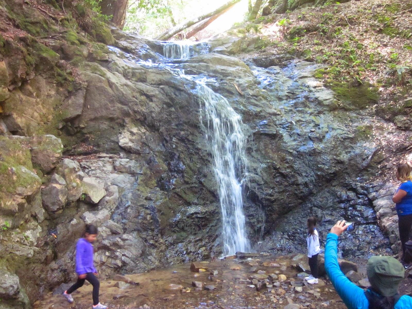 Santa Cruz Mountains Trails: Uvas Canyon County Park