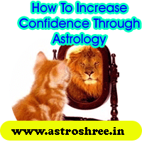How to increase confidence level through astrology?, Gems stones to increase confidence level, houses of birth chart or kundli or horoscope responsible for confidence level, best Tips to increase confidence level, Astrologer for Confidence Problems Solutions.