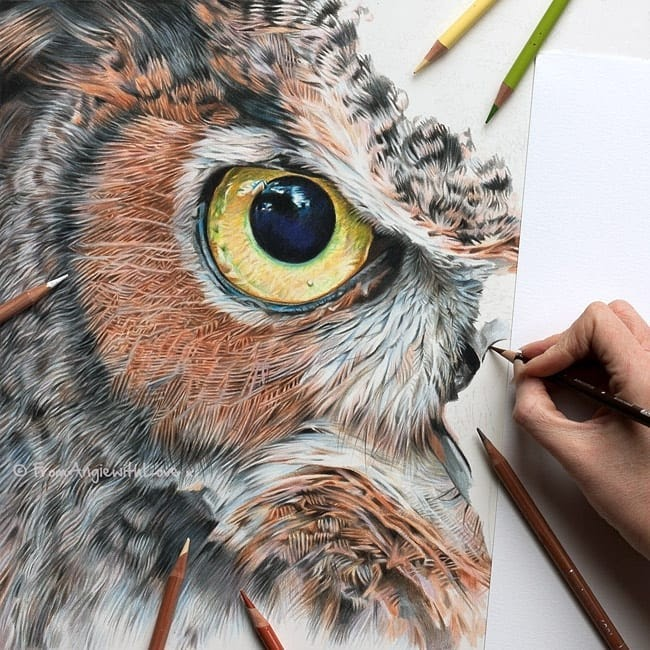 13-Eagle-Owl-work-in-progress-Angie-Cats-Dogs-and-an-Owl-Pencil-Drawings-www-designstack-co