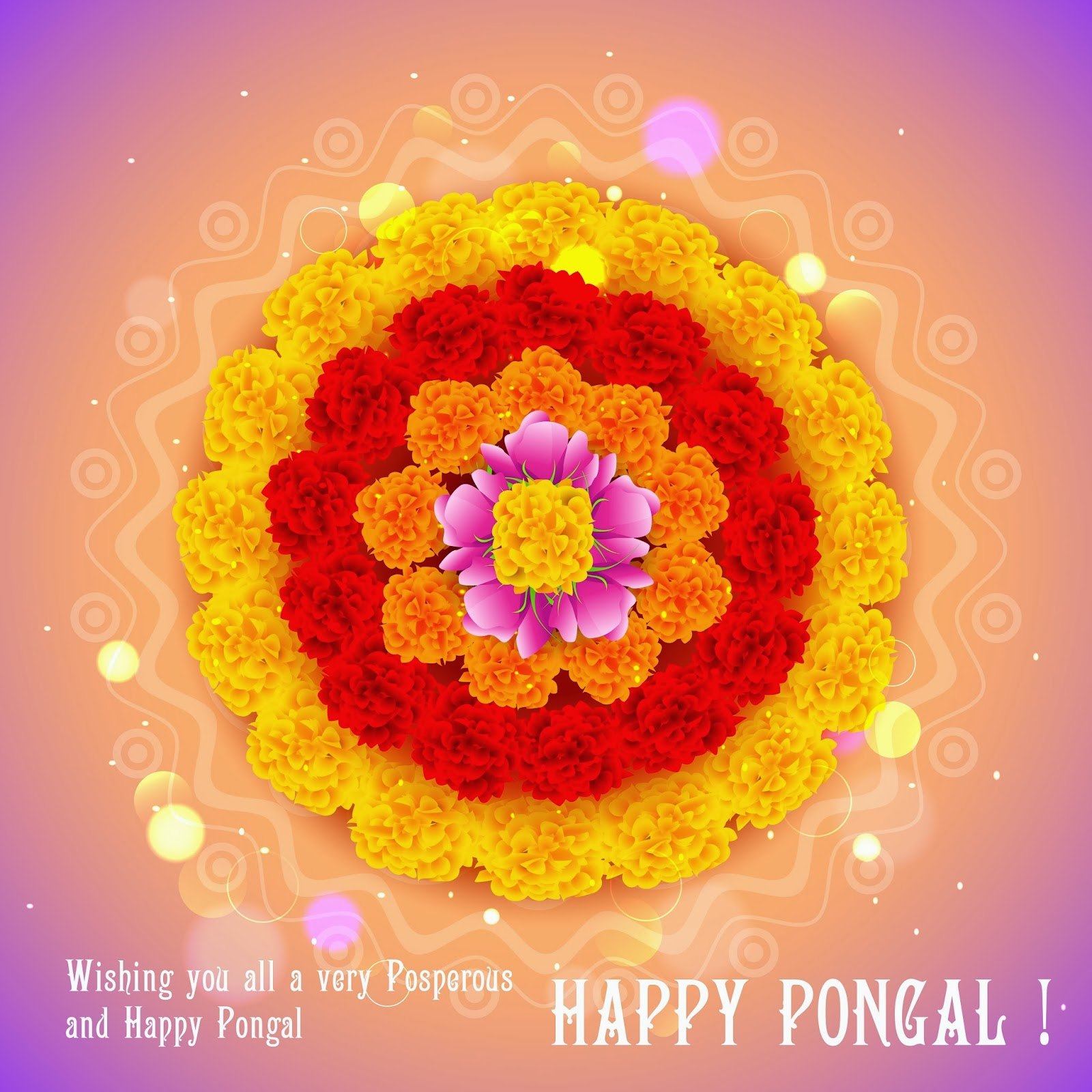 happy-sankranti-images-with-hd-flowers-naveengfx.com