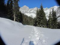 Winterwandern_mit_Blick_auf_die_Berge
