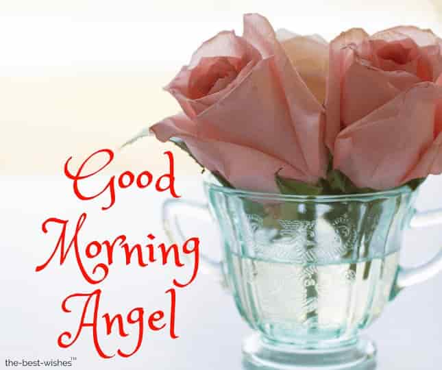 photos of good morning angel