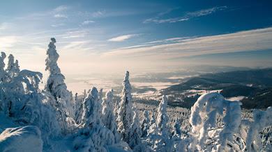 Nature in Winter looks Amazing