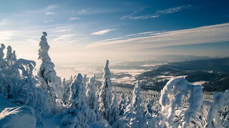 Nature in Winter looks Amazing Public Domain