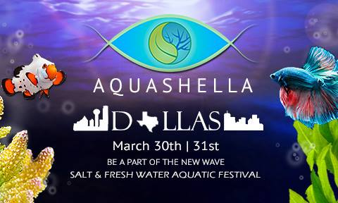 Aquashella - Dallas 2019