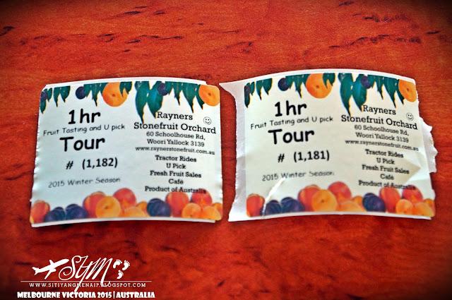 Jalan-Jalan Melbourne, Tempat Menarik Di Melbourne, Tempat Menarik Di Phillip Island, Nobbies Centre, The Nobbies, Cowes, Ventnor, Phillip Island, Makanan Halal Di Melbourne, Makanan Halal Di Phillip Island, Fish & Chips Di Phillip Island, Memancing Ikan Di Phillip Island, Tempat Solat Di Phillip Island, Tengok Anjing Laut Dan Ikan Paus Di Phillip Island, Lokasi Nobbies Centre, Lokasi Jeronimos Restaurant, Burger Edge, Yarra Valley, Dandenong Ranges, Rayner's Stonefruit Orchard, Pengalaman Petik Buah Di Australia, Kebun Buah Di Australia, Fruit Picking In Australia, Fruit Tour,