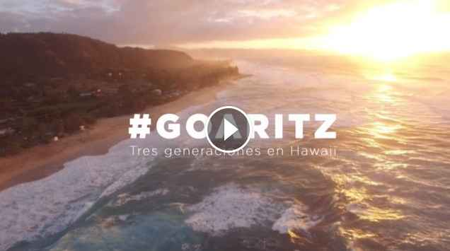 GOARITZ HAWAII