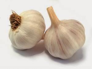 Manfaat Bawang Putih dan Khasiat Bawang Putih
