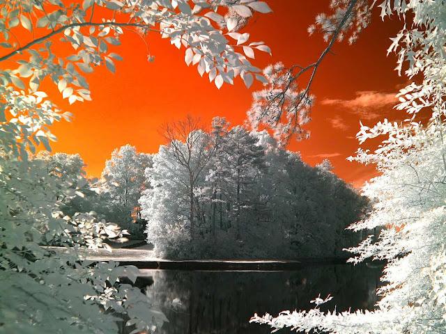 التصوير بالأشعة تحت الحمراء .. شاهد الأشياء من حولك بمنظور مختلف !!