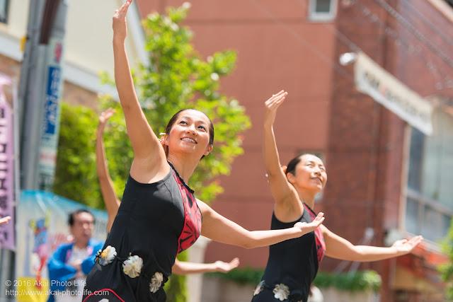 マロニエ祭り、カハレフラ&タヒチスタジオの写真 19