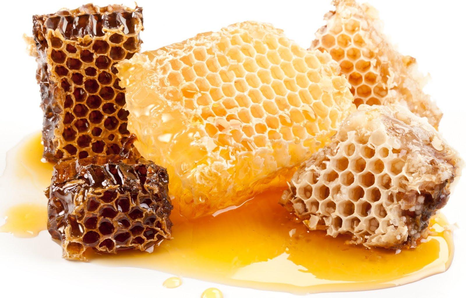 Khasiat lengkap dari madu