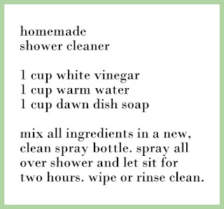 Lizzy Write Homemade Cleaning
