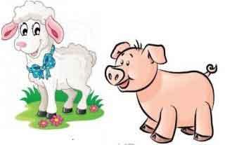 Lectura: El cerdo y los carneros