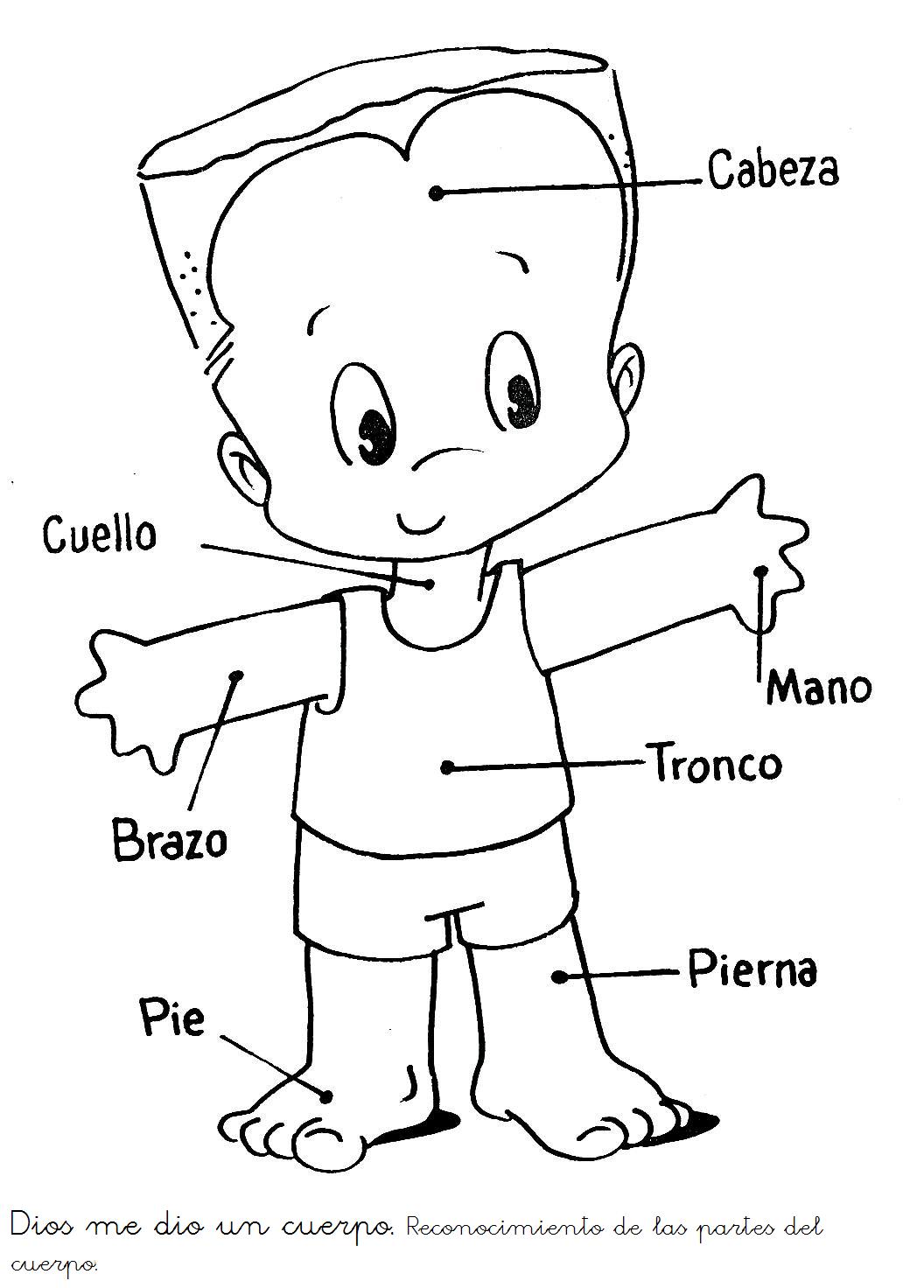 Y Nino Cuerpo De Silueta La De Del Nina Dibujos