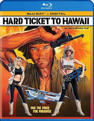 Hard Ticket To Hawaii 1987 UNRATED Dual Audio BRRip 480p 300Mb x264
