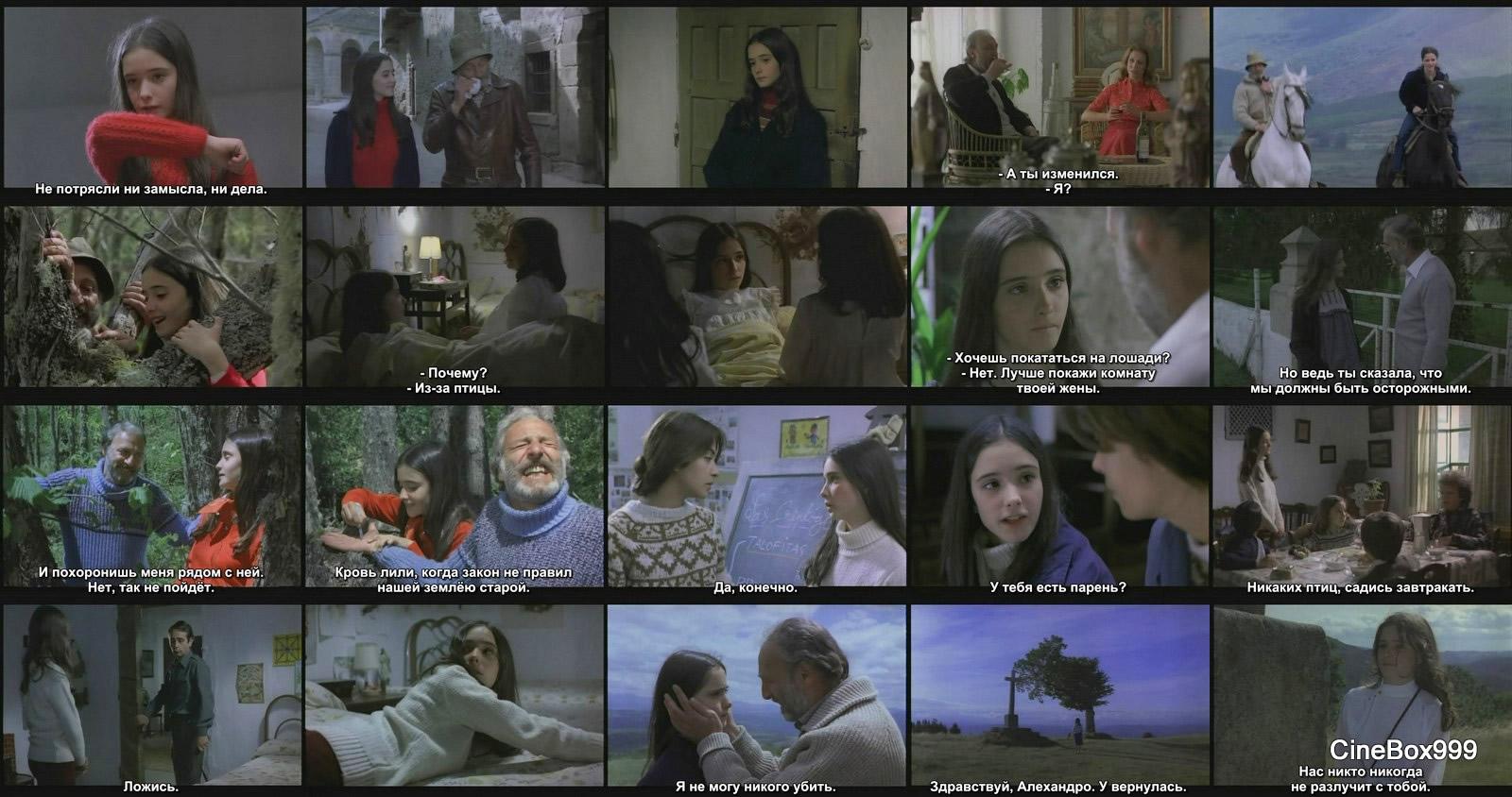 El nido 1980 download