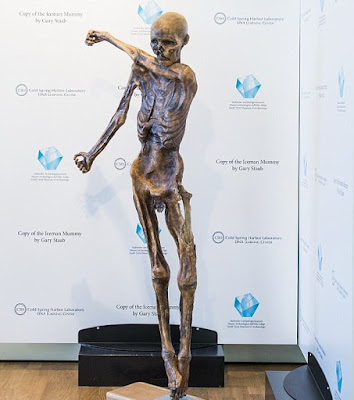 Replica of 5,000-year-old 'Iceman' made on 3D printer