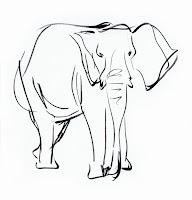 Deja View: Animal Sketchbook