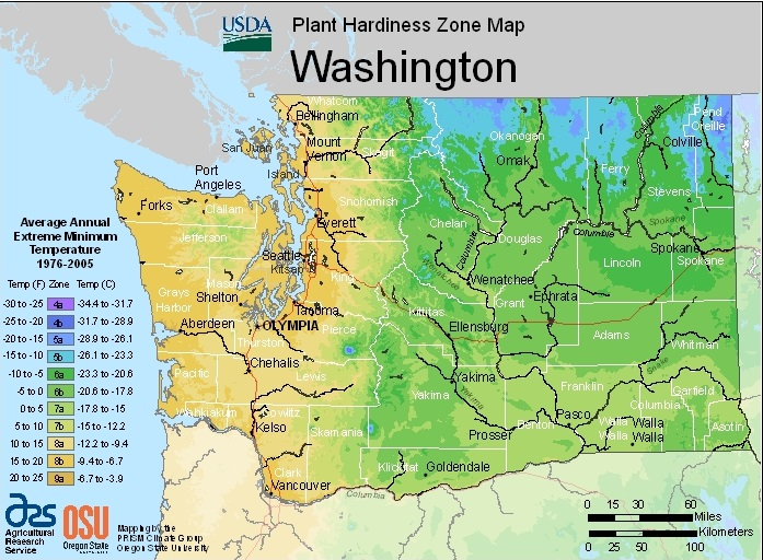 Farmers Know Best: Washington USDA Plant Hardiness Zones Map ... on shipping map, growth zones map, fruit zones map, soils map, plants zones map, gardening zone map, usda hardiness zones map, sri lanka zones map, farming zones map, life zones map, history map, bark map, garden zones map, blooming zones map, memory map, grow zones map, 2013 hardiness zone map, planning zones map, flowers zones map,