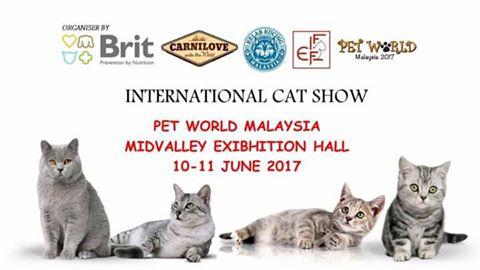 Pet World International Cat Show 2017