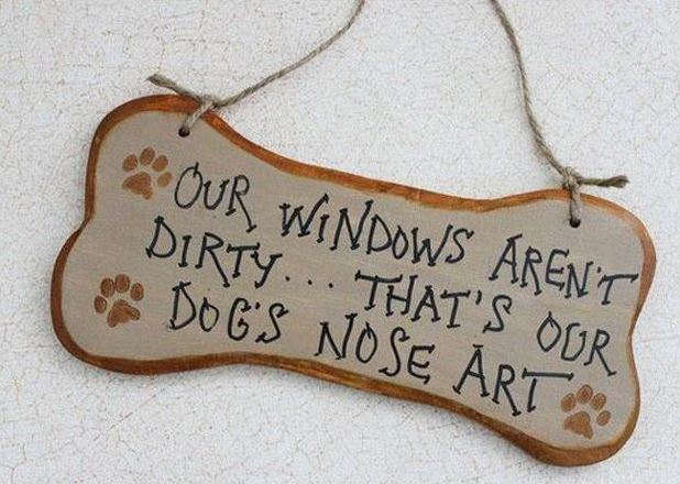 17 Hilarious Problems Dog Owners Will Relate To - Anyone who has windows and a dog knows this.
