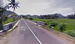 Jembatan dan sawah Damas Hadiwarno Pacitan