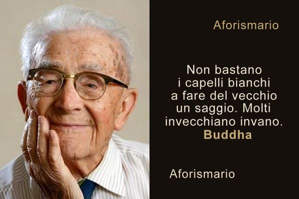 Molto Aforismario®: Capelli Bianchi e Grigi - Frasi e proverbi WF25