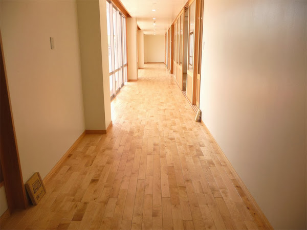 保育園の床に使用したカバ桜無垢フローリング・廊下