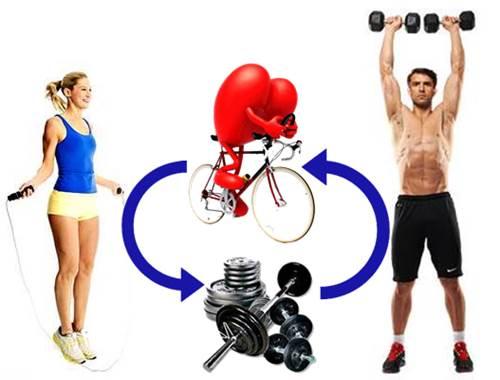 Efectividad a la hora de mezclar el entreno de pesas con uno de cardio