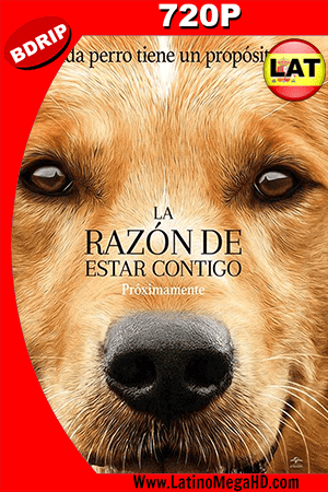 La Razon De Estar Contigo (2017) Latino HD BDRip 720p ()