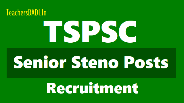 tspsc senior steno posts 2018 recruitment,apply online upto july 2,tspsc senior stenos online application form,how to apply for tspsc senior stenos recruitment,last date to apply for vros,application fee,senior steno hall tickets results,exam date,answer key